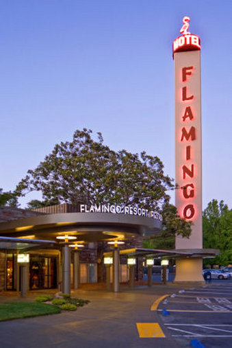 Flamingo Resort Hotel And Spa