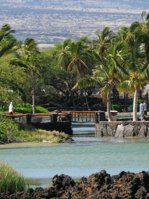 Kolea At Waikoloa Beach