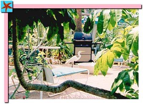 Tropical Breeze Resort Siesta