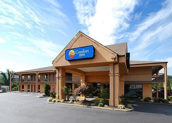 Comfort Inn Johnson City