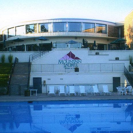 Mountain Laurel Resort