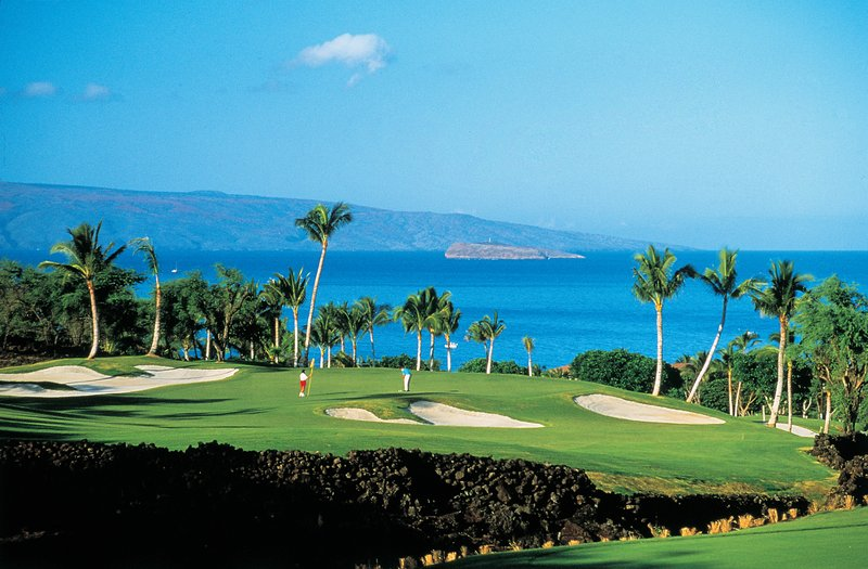 Palms At Wailea Maui By OR